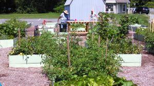 Presbyterian Church of Easton develops garden community