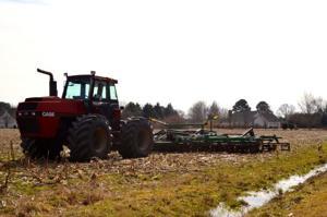 Bay area farming