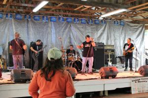 Island Bay Day 2014 bands