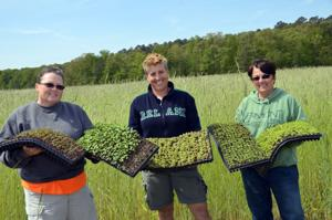 Farm owners with microgreens