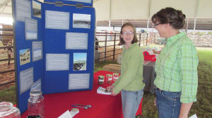 Teen sets out to dispel myths about beef