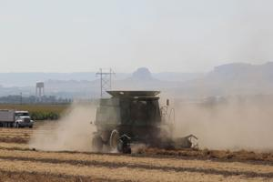 Harvest conditions start strong