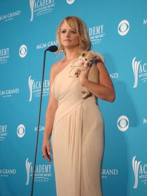 <p>Miranda Lambert being interviewed in the press room at the 2010 Academy of Country Music Awards</p>
