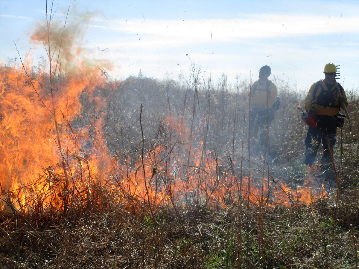 Town performs controlled burn at The Flower Mound News