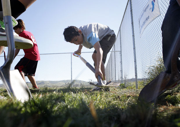 More than a garden is growing in Tanglewood