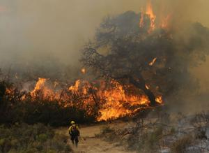 Mesa Fire near Lompoc at 55-percent containment