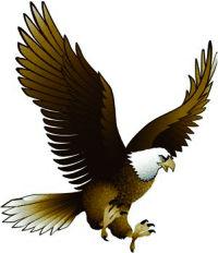 Eagle Valley Builders, LLC