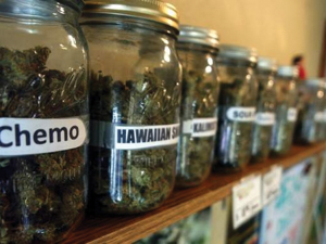 According to the most recent ruling from the Michigan Court of Appeals, dispensaries are not legal under the Medical Marihuana Act (MMA).