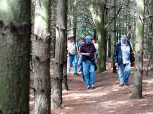 A group tours the Dauner-Martin Nature Preserve in Fenton last April. Early spring and fall are great times of the year for hiking due to the cooler air and fewer insects.