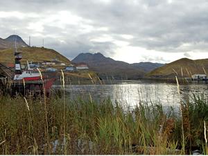 Scenic view of Alaska