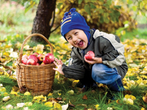 Autumn brings about many opportunities for good health habits. Here are a few ideas to get you started