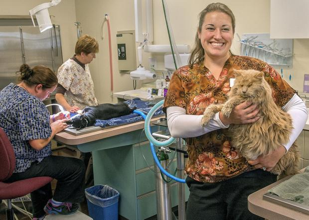 Woodland vet clinic doubles space in new building