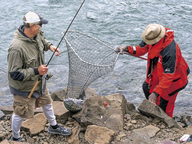 Anglers tacoma power hash out cowlitz river fishing concerns for Cowlitz river fishing