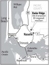 Marbled murrelet may keep Pacific County wind farm from getting off the ground