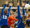 Prep volleyball: TDN's all-area player of the year — Kalama's Averi Dyer