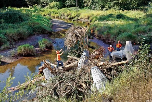 Large stone blocks improve germany creek fish habitat Habitat deutschland