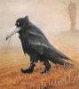 crowsfoot