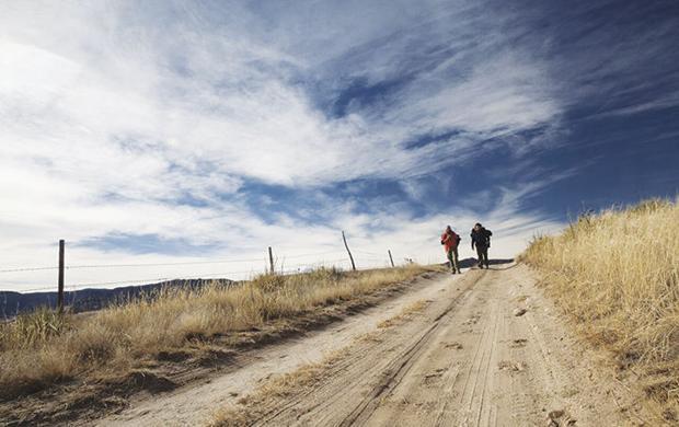 Steps toward healing
