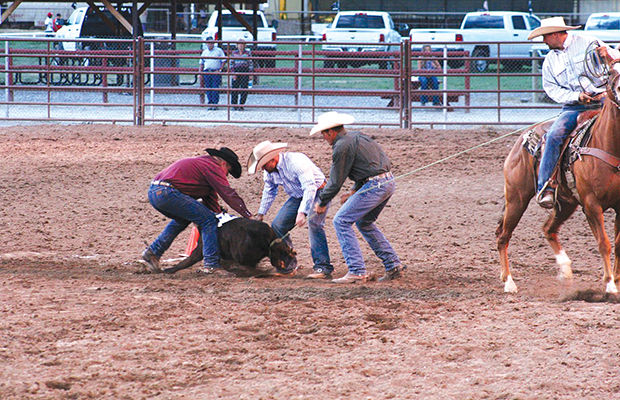Working cowboys show off at new rodeo