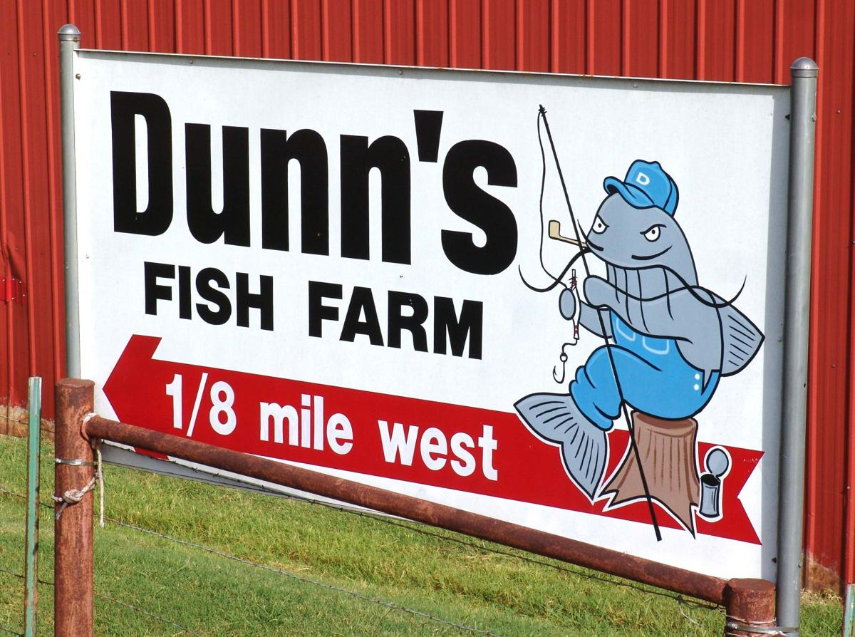 Fish farm uses 98 million gallons of water at no cost in for Dunn fish farm