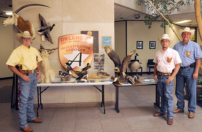 Illegal taxidermy seized at Triple S Wildlife Ranch & Resort
