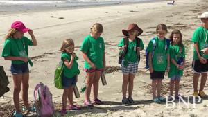 Turtle Camp educates children on coastal habitats