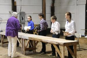 Judging for 4-H exhibits begins