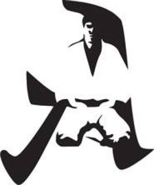 Academy of Modern Martial Arts