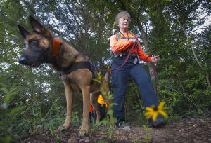 Training session held for canines in Bryan's Search Dog Network