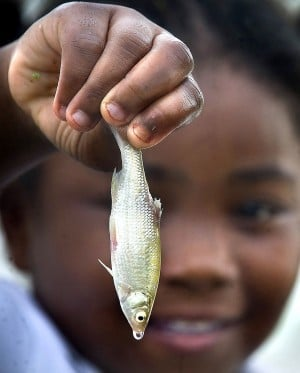 Kids fishing clinic set for Saturday in College Station