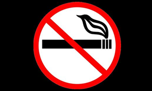 Essay on smoking, please help! 10 points!!?