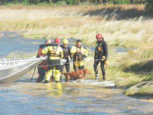 Bay rescue
