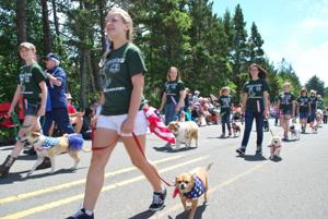 Parade dogs