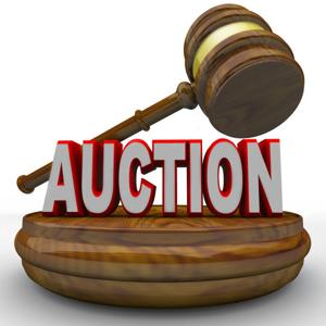 Chamber Super Auction
