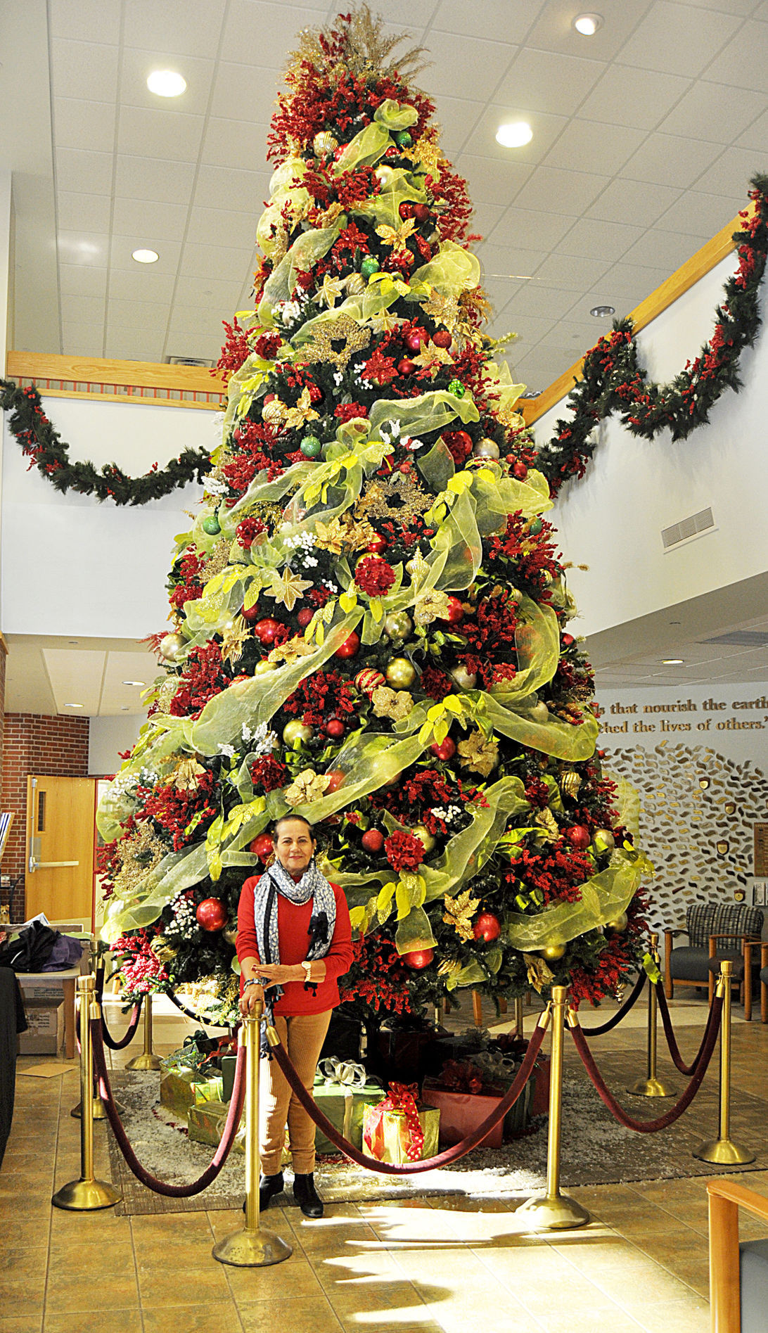Christmas Decorations At Haskins : Penn highlands dubois christmas tree tradition continues