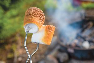 <p>ROASTING MARSHMALLOWS isn't just a summertime activity in several state parks that will be open throughout the winter.</p>