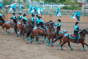 http://m.thereflector.com/mobile/horse_corral/article_5e590b16-9c83-11e2-9581-0019bb2963f4.html