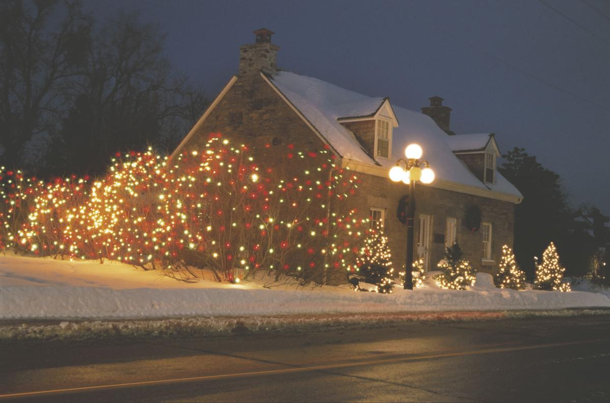 How To Decorate Outside For Christmas - Photo courtesy metro decorate the live tree in your yard this christmas