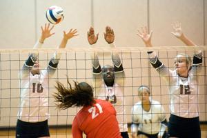 Photos: Terriers Volleyball