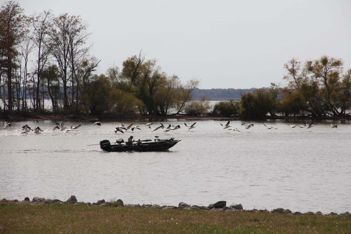 Idnr terminates lease at rend lake resort and conference for Rend lake fishing