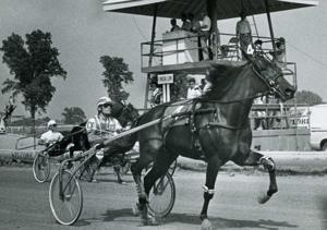 Photos: Harness racing in Southern Illinois