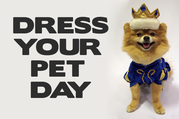 National Dress Up Your Pet Day. Wood Fireplace Doors. Garage Organization Diy. Chicagoland Garage Builders. Garage Door Openers At Home Depot. Diy Epoxy Garage Floor. Sears Garage Door Service. Pride Pet Doors. Where To Buy Garage Door Struts