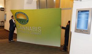 2016 Marijuana