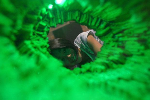 Norton sculptor's 'Emerald City' exhibit opens at Boston museum