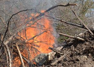 brush fire 4