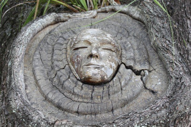 Tree spirits on st simons island s thetandd