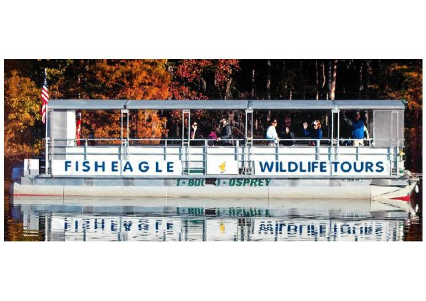 Business Fisheagle Tours