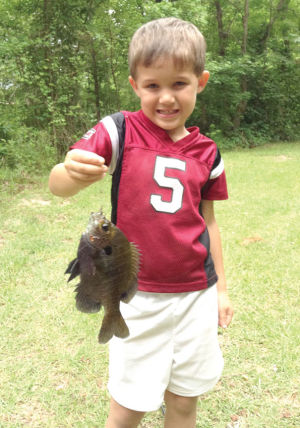 S.C. freshwater fishing report -- December 27, 2014
