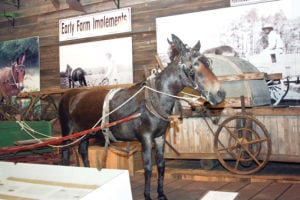 100 OBJECTS/DAY 40: Elloree Heritage Museum exhibits depict early rural life