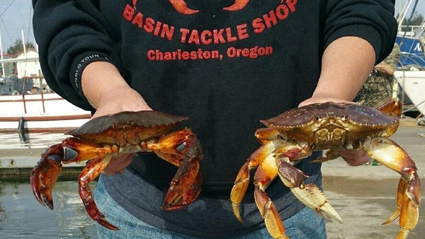 Calendar Bulletin Board Set : Rob s friends get red rock crab in charleston outdoors